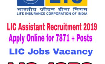 LIC Assistant Recruitment 2019 : Apply Online for 7871